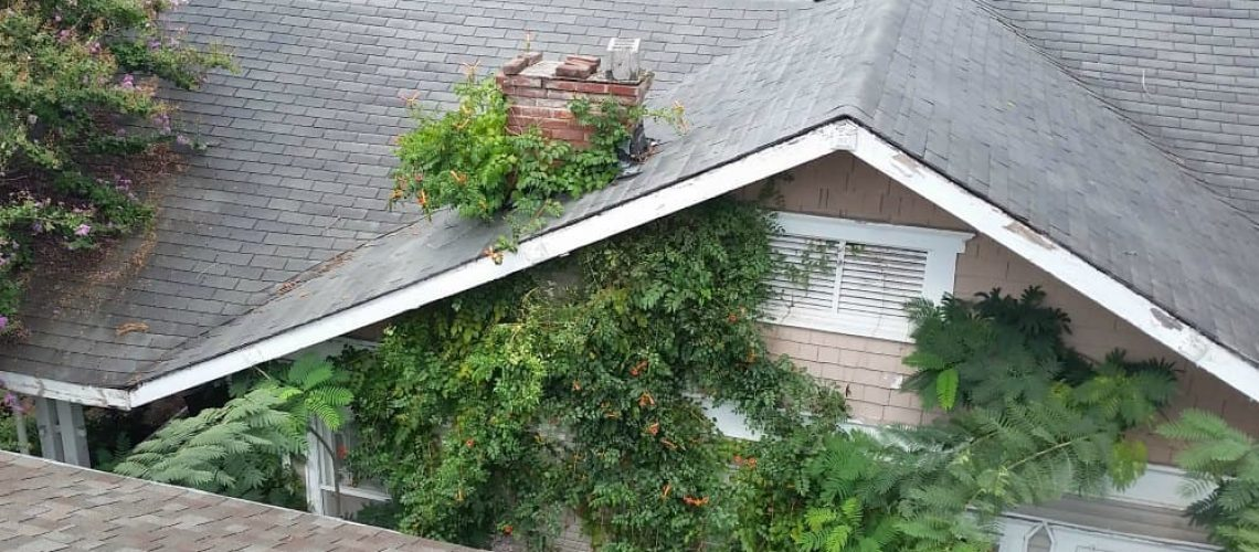 Whirlwind Roofing Blog Chimney Leaks (1)